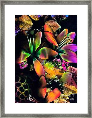 Orange Flowers Framed Print by Doris Wood