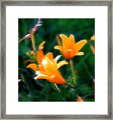 Orange Lilies Framed Print by Elizabeth  Doran