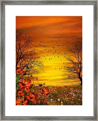 Orange Meadow Montage Framed Print by Julie L Hoddinott