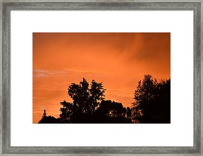 Orange Sky Framed Print by Naomi Berhane