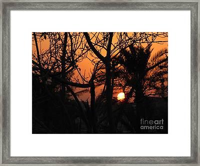 Orange Sky Framed Print by Will Cardoso