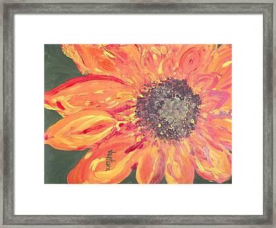 Orange Sunflower Framed Print