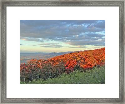 Orange Velvet In Shenandoah Framed Print