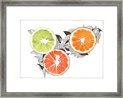 Orange Framed Print by Viki Vehnovsky
