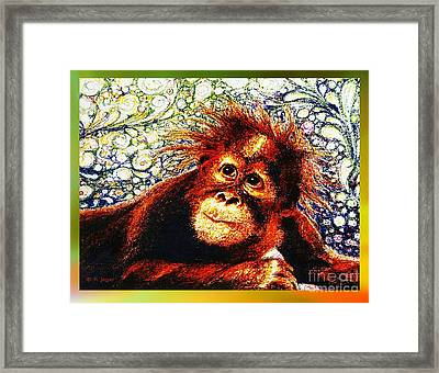 Framed Print featuring the drawing Orangutan Baby by Hartmut Jager
