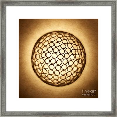 Orb Web Framed Print by Tony Cordoza