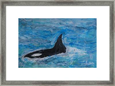 Orca Framed Print by Iris Gill