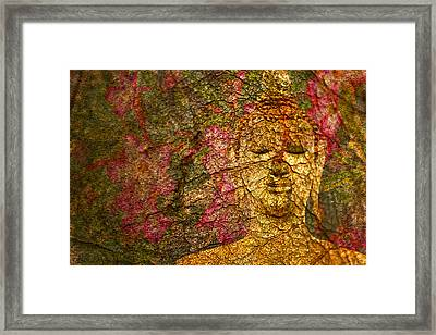 Orchid Buddha Framed Print by Rob Tullis