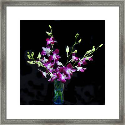 Orchid Spray. Framed Print