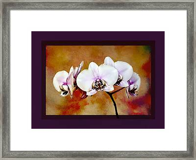 Framed Print featuring the painting Orchids by Mary Morawska