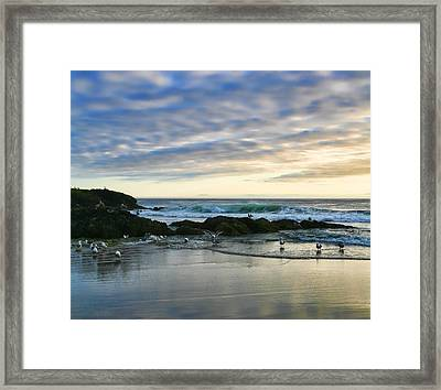 Oregon Coast At Dusk Framed Print by Bonnie Bruno