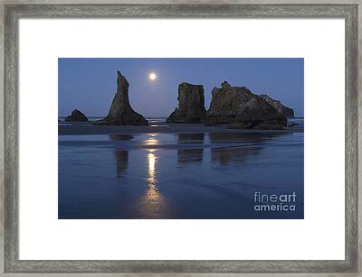 Oregon Coast Framed Print by John Shaw and Photo Researchers