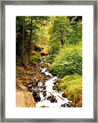 Framed Print featuring the photograph Oregon Hobbit House by Maureen E Ritter