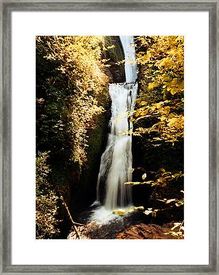 Framed Print featuring the photograph Oregon Waterfall Yellows by Maureen E Ritter
