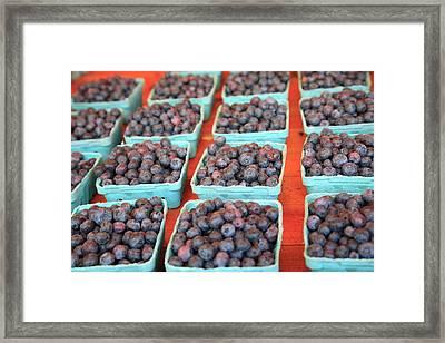 Organic Blackberries Framed Print by Wendy Connett