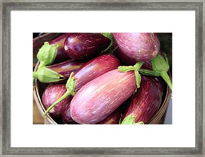 Organic Eggplant Framed Print by Wendy Connett