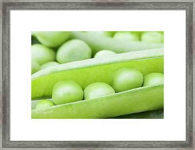 Organic Peas Framed Print