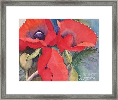 Oriental Poppies Framed Print
