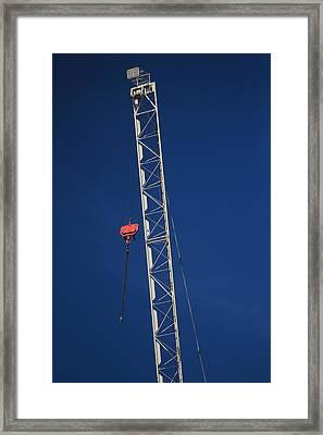 Original Crane Framed Print by Bogdan Constantin Petrovici