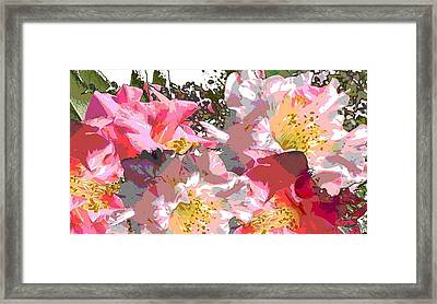 Original Fine Art Digital Camelias 1c Framed Print