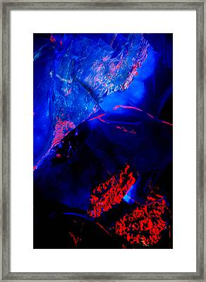 Origins Framed Print by Colleen Cannon