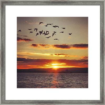 Orkkney's Sunset Framed Print