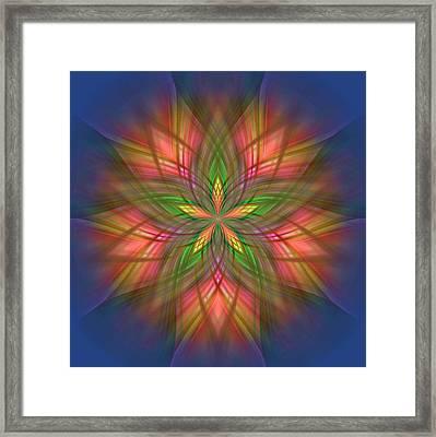 Ornament Framed Print