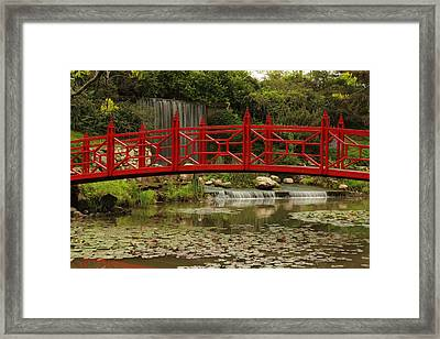 Ornamental Garden Framed Print by Coby Cooper