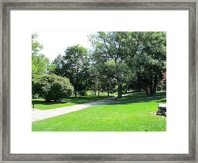 Oshawa Botanical Garden 2 Framed Print by Sharon E Steinhaus