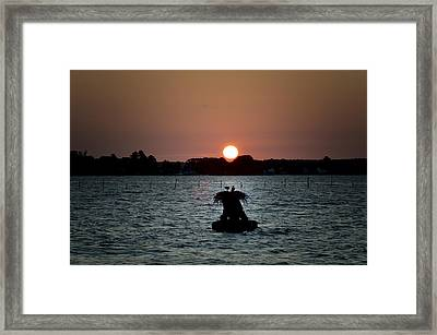 Osprey Sunrise Framed Print