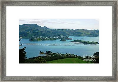 Otago Harbour Framed Print by Therese Alcorn