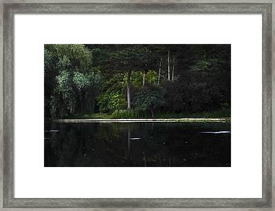 Other Side Framed Print by Svetlana Sewell