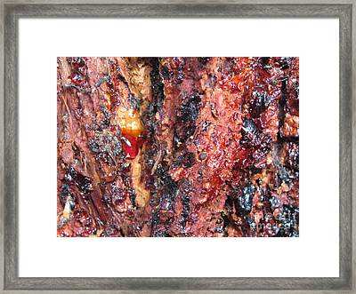 Ouch Framed Print by Tina Marie