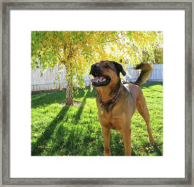 Our Friend Milton Framed Print by Margaret Buchanan