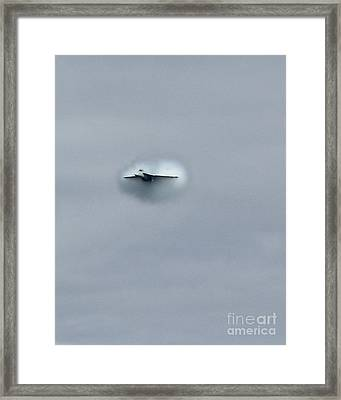 Framed Print featuring the photograph Out From The Gray by Alex Esguerra