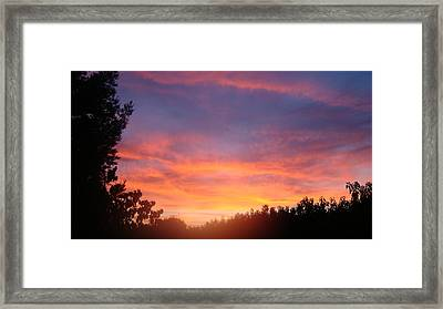 Out My Backdoor  Framed Print