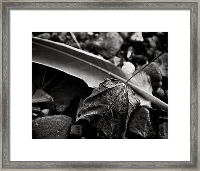 Out Of Context Framed Print