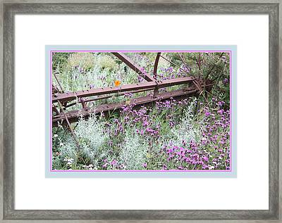 Out Of Danger Framed Print by Susan Alvaro