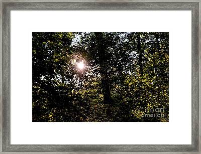 Out Of The Darkness He Calls Framed Print by Maria Urso