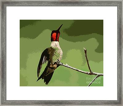 Out On A Limb - Green Framed Print