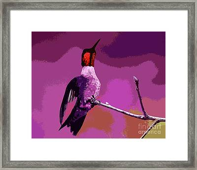 Out On A Limb - Pink Framed Print