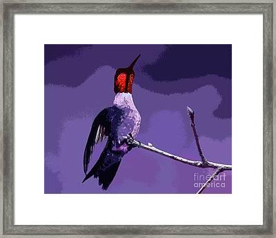 Out On A Limb - Purple Framed Print