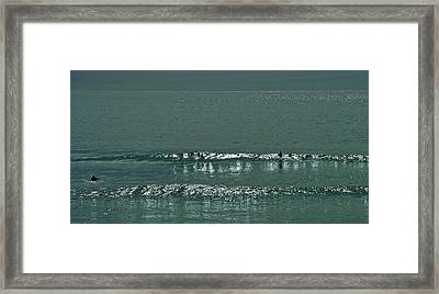 Out The Back Framed Print by Jocelyn Kahawai