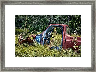 Out To Pasture Framed Print by Ken Williams
