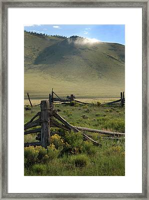 Out To Pasture Framed Print