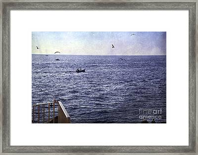 Out To Sea Framed Print by Madeline Ellis