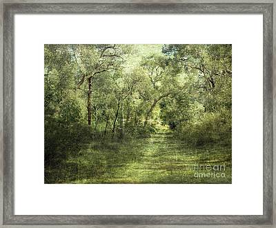 Outback Bush Framed Print by Linde Townsend