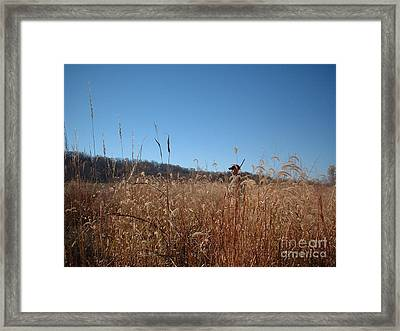 Framed Print featuring the photograph Outstanding In His Field by Mark McReynolds