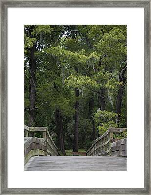 Over The Bridge Framed Print by Christina Durity