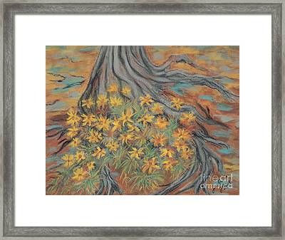 Over The Roots Framed Print by Jim Barber Hove